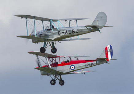 Blackburn B2 and Tiger Moth